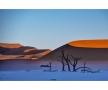 Trevor-Cole,-Deadvlei-dunescape,-Namibia