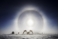 Antarctica_41