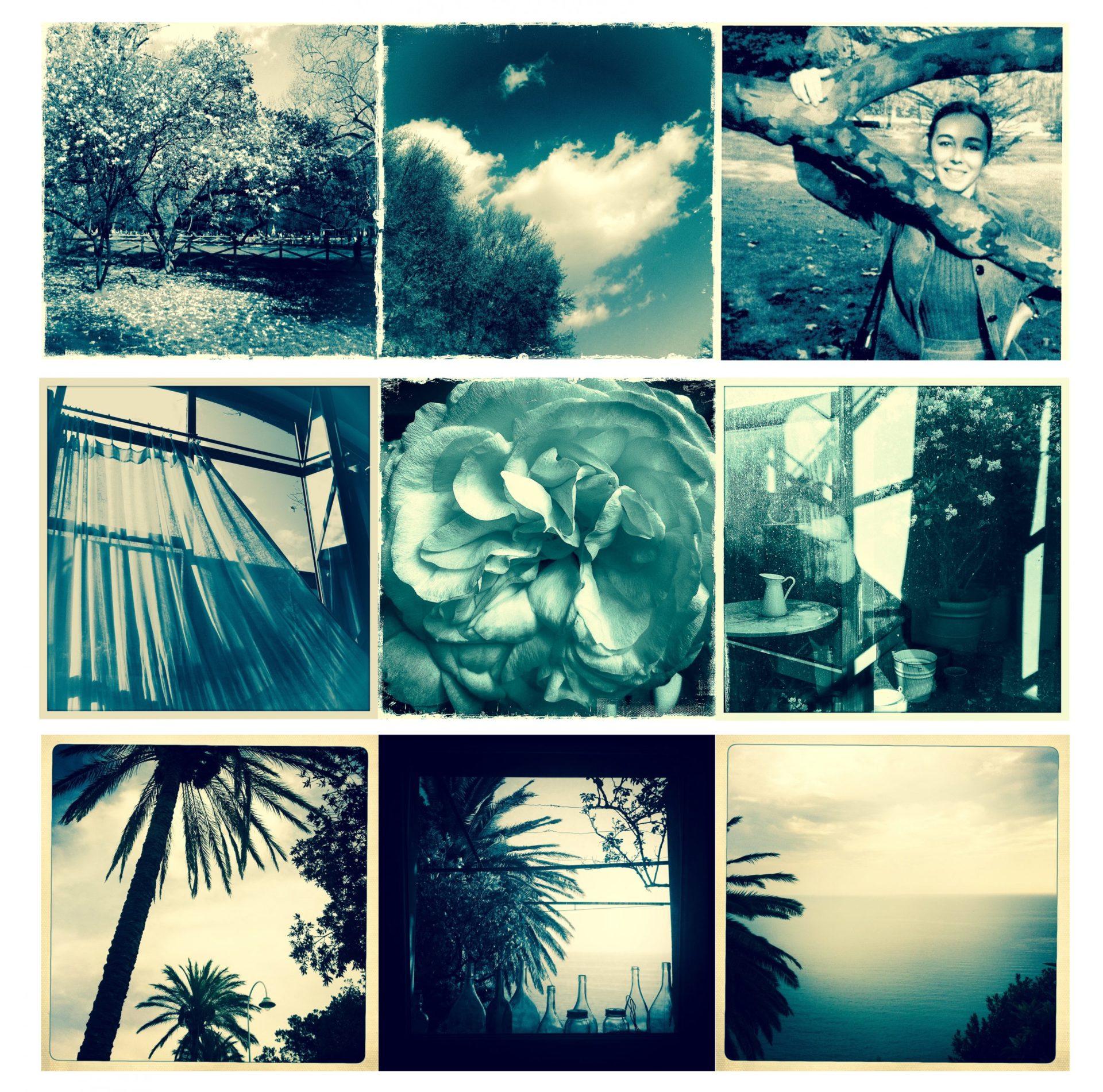 Alta Trittico LuceDiEstate scaled - Milano Photofestival