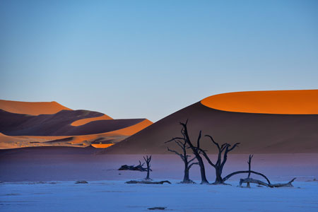 Deadvlei dunescape Namibia catalogo copia - Milano Photofestival