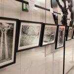IMG 5130 - Milano Photofestival