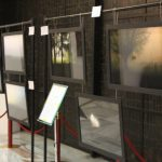 IMG 5131 - Milano Photofestival