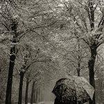 Il manto silente/The silent mantle – Gianluca Granata