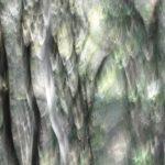 Act I – De Rerum Natura