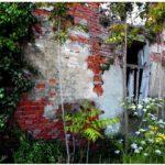 Urban Nature, Nature Forever?