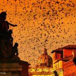 Her Majesty, Rome