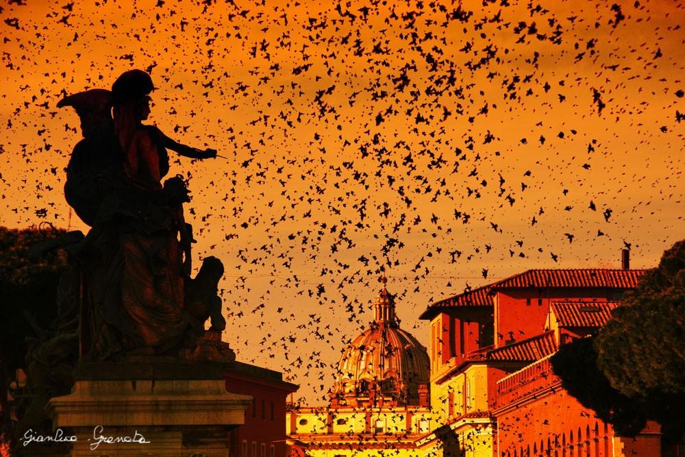 Sua Maestà Roma
