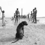 Cape Verde: the archipelago in Black and White