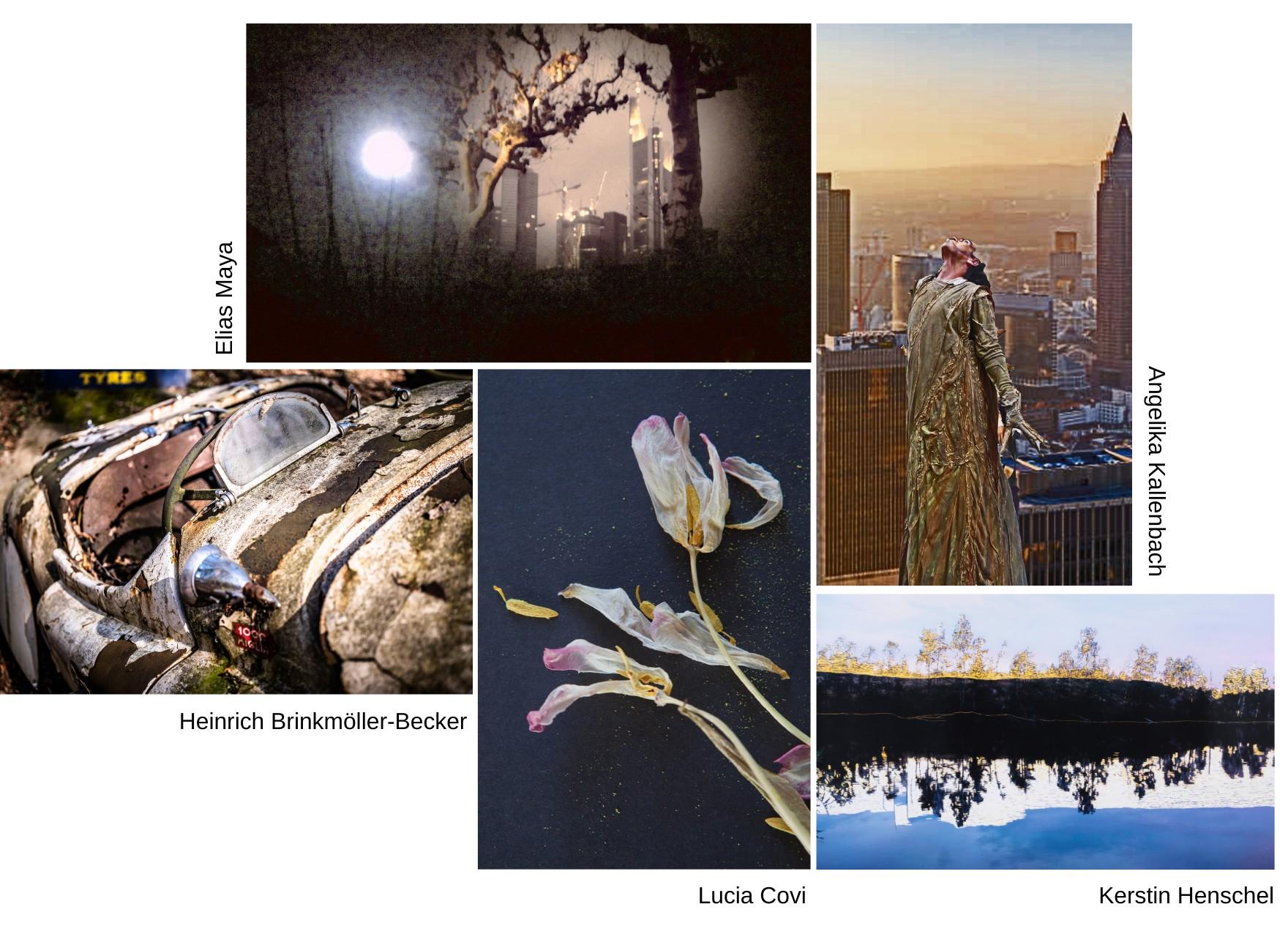 Nuove Visioni Copia 1 - Milano Photofestival