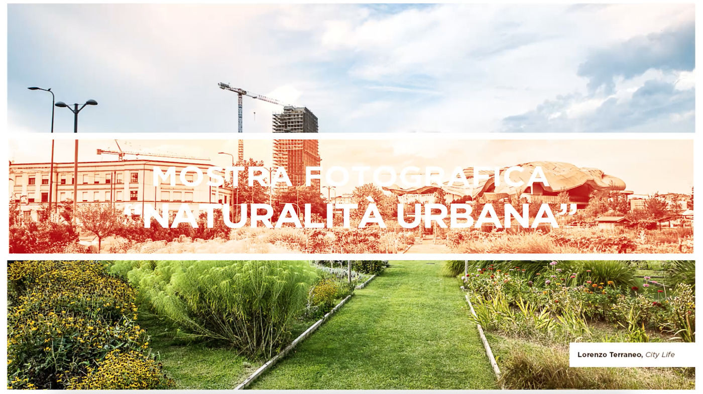 preview video Naturalita Urbana teaser - Milano Photofestival